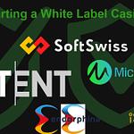 Casino Providers: NetEnt, SoftSwiss, Microgaming, Endorphine, ISoftBet and PlaynGO