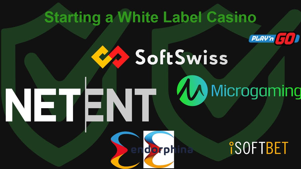 Casino Providers: NetEnt, SoftSwiss, Microgaming, Endorphine, ISoftBet and PlaynGO
